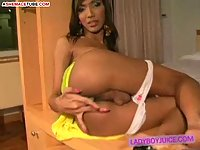 Tranny makes ass fingering before cock jerking
