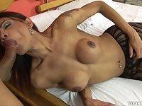 Sexy Busty Tranny In Pantyhose Fucked Hard