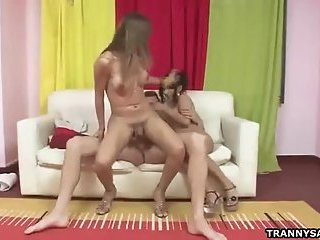 Two sexy amateur shemales share a studs hard cock